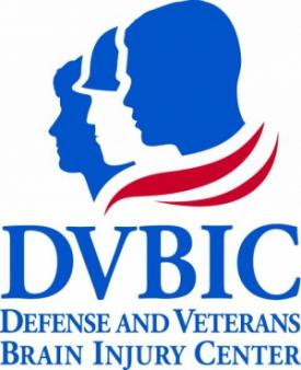 DVBIC logo